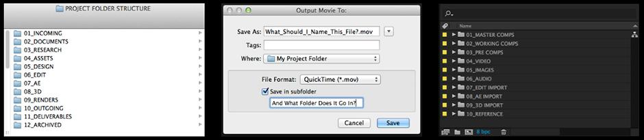 Folder Structure for Motion Design.png