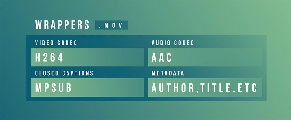 Video Codecs in Motion Graphics
