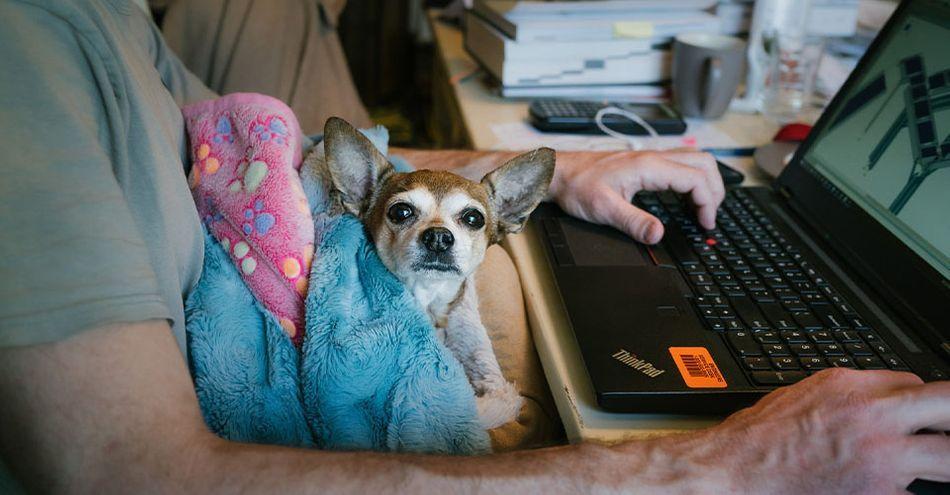 healthy-work-practices-freelancers-6.jpg